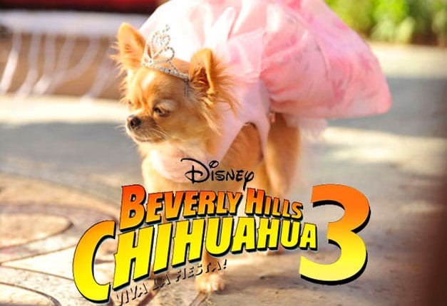 Win 1 of 10 Beverly Hills Chihuahua 3 DVDs!