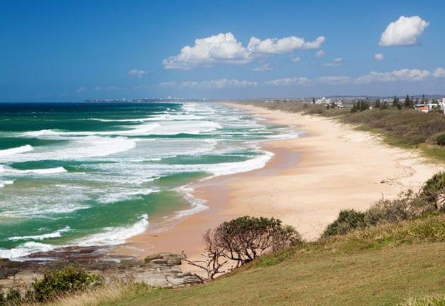Little Rays of Sunshine… The Sunshine Coast