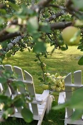 Garden inspiration - Adirondacks