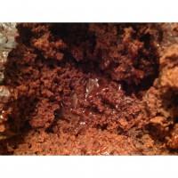 Chocolate and Cinnamon Self Saucing Pudding