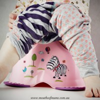 Toilet training - the ins and outs