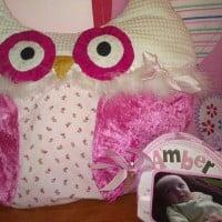 Fun Owl pillow