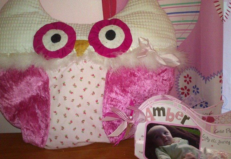 Fun Owl pillow