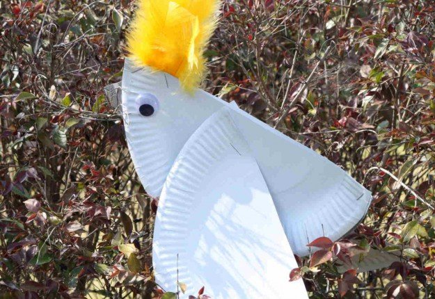 Paper Plate cockatoo