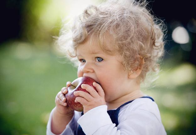 Tips for making mealtimes with your toddler easy