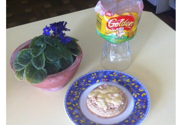 Tuna and Cheese Melt Oat Crumpets