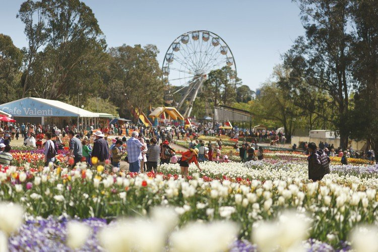 WIN a trip to Spring Extravaganza in the Nation's Capital