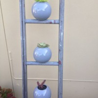 Re-purposed ladder planter