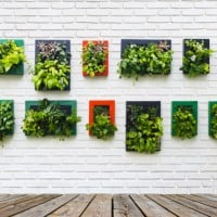 Creating a DIY vertical garden from household items