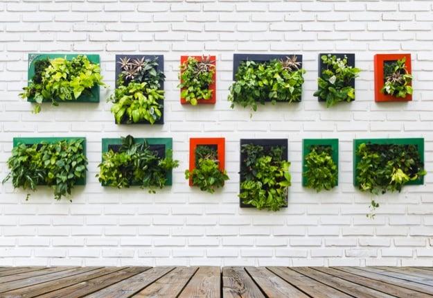 SS_DIY_vertical_garden