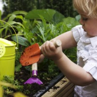 Fun and Easy Gardening Tips for Kids