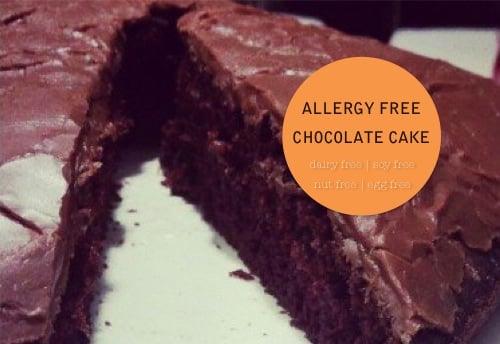 500_gluten free dairy free_allergy free chocolate cake