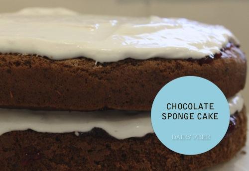 500_gluten free dairy free_chocolate sponge cake