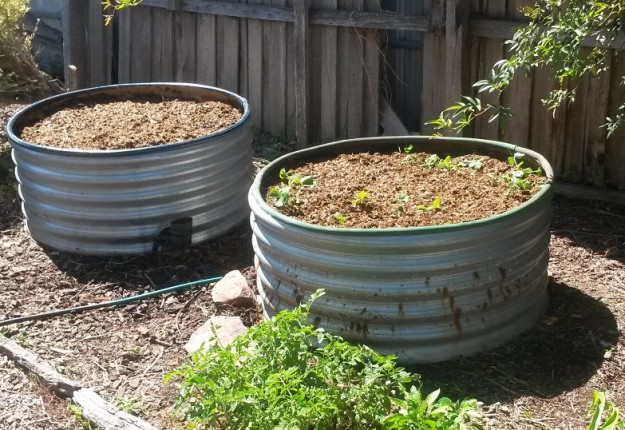 Raised tank garden bed