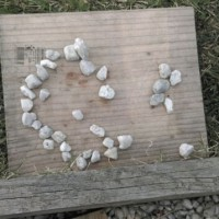 Toddler pebble pictures