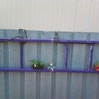 Decorative wall garden