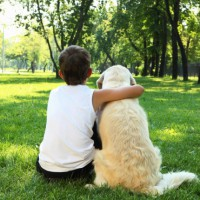 Tips for choosing the right dog for a young family