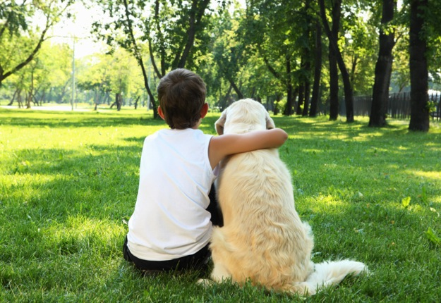 Missey Grace reviewed Tips for choosing the right dog for a young family