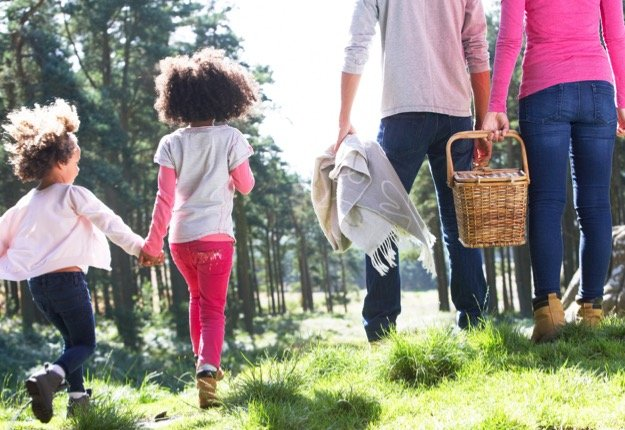 Plan the ultimate family picnic this spring