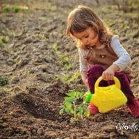 Why gardening is the gateway to learning - how to start with your kids