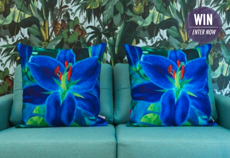 WIN One Set of 3 Cushion Covers!
