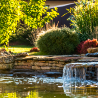 Pond safety tips for families