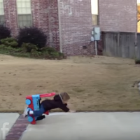 FUNNY VIDEO: Funny Toddler Fails... Must Watch!