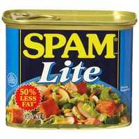 Spam Ham Lite