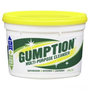 Gumption Paste Multi Purpose Cleanser