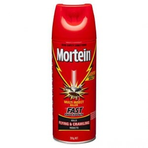 Mortein Insect Spray Fast Knockdown