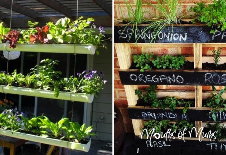 10 ideas on how to make your own vertical garden