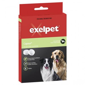 Exelpet Treatment Capstar Medium/large Dog