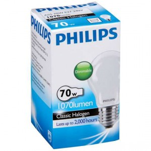 Philips Eco Halogen Globe Frosted 70w Es Base