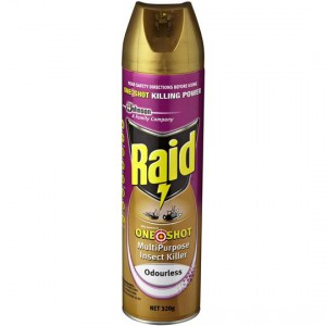 Raid Insect Spray One Shot M/ Purpose Odourless