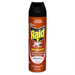 Raid One Shot Insect Spray Odourless