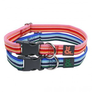 Rufus & Coco Nylon Stripe Dog Collar Xsmall