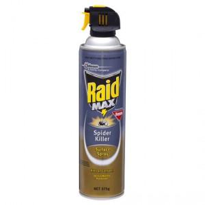 Raid Max Insect Spray Spider Killer