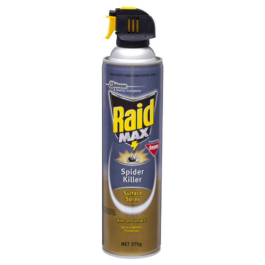 Raid Max Insect Spray Spider Killer