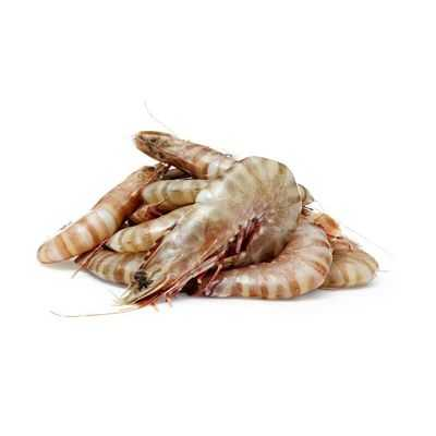 Australian Prawns Tiger Large Thawed