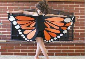 pinterest butterfly wings