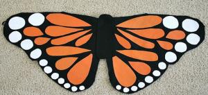 pinterest butterfly
