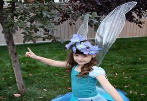 pinterest fairy wings