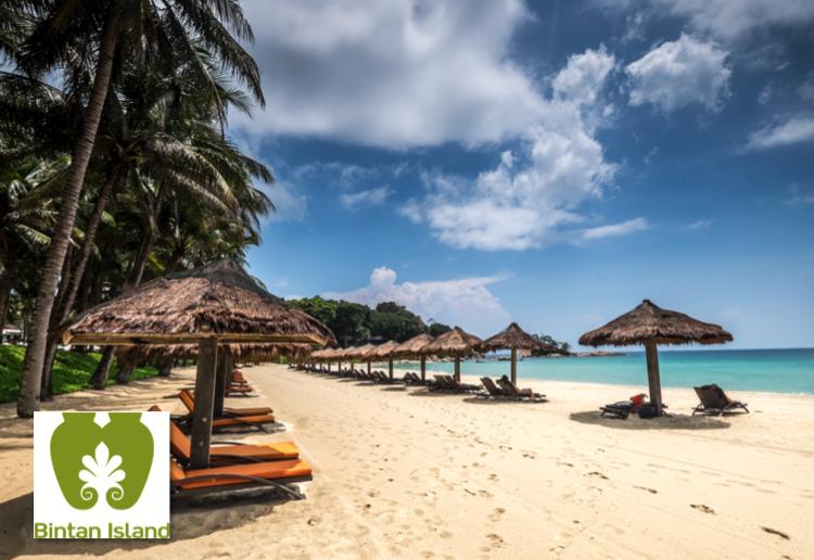 Bintan Island Beach Sun Lounges_Bintan Island Beach_Club Med_750x516