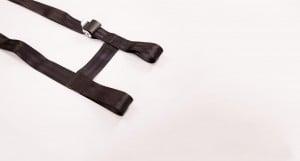 h-harness-1_result