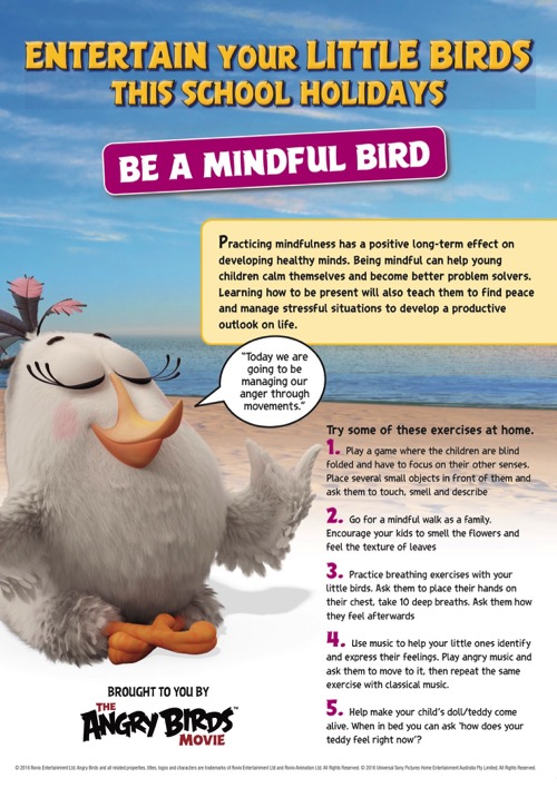 be-a-mindful-bird_angry-birds