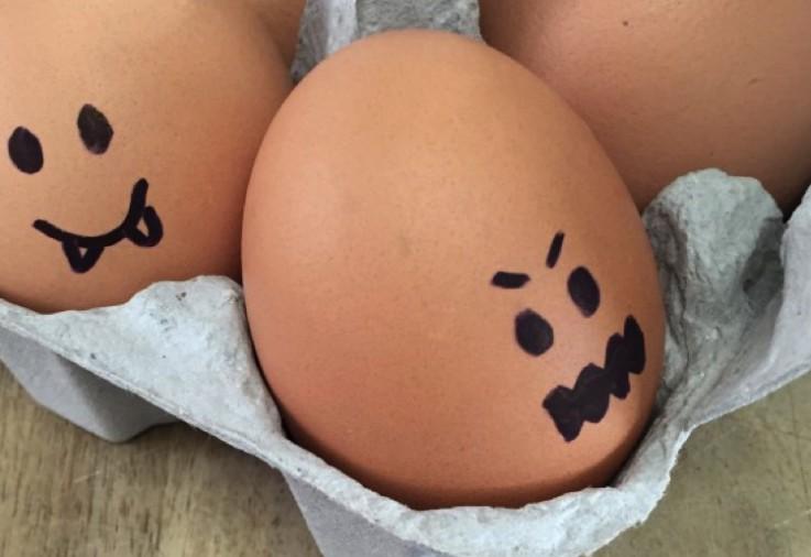 eggs getting salmonella