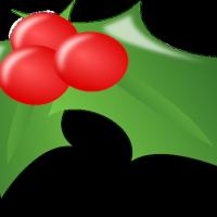 Video: How to make Holly Christmas bark