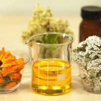 9 Reasons you can't go another day without rosehip oil!