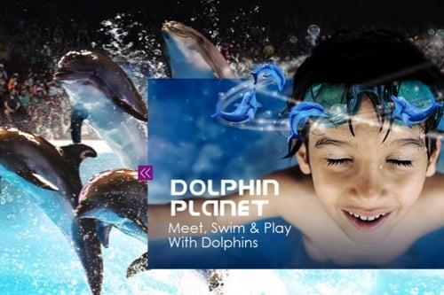 visit-dubai-feature_dolphinarium_dolphin-planet