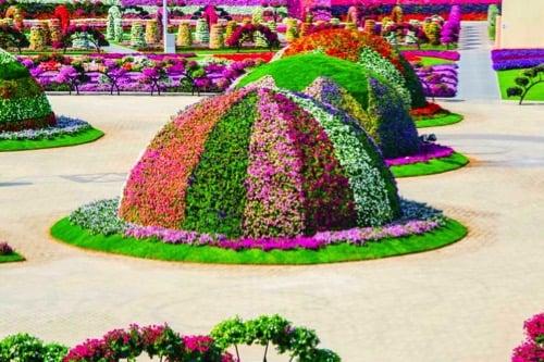 visit-dubai-feature_miracle-garden_2